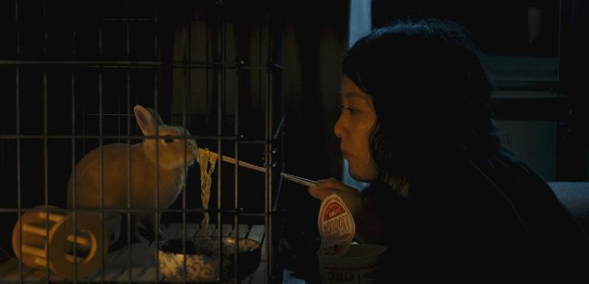Kumiko feeds her only companion, the pet rabbit named Bunzo