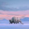 Avatar the Last Airbender Netflix Bryan Konietzko Michael Dante Di Martino