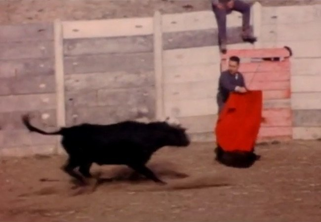 Possessor David Cronenberg Jose Delgado Bull
