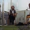 Peter Jackson Beatles