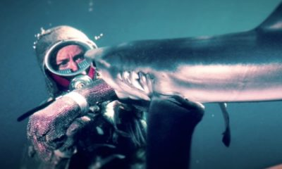 Jaws Heroine Playing With Sharks Valerie Taylor