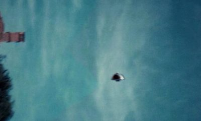 Westall Incident UFO picture