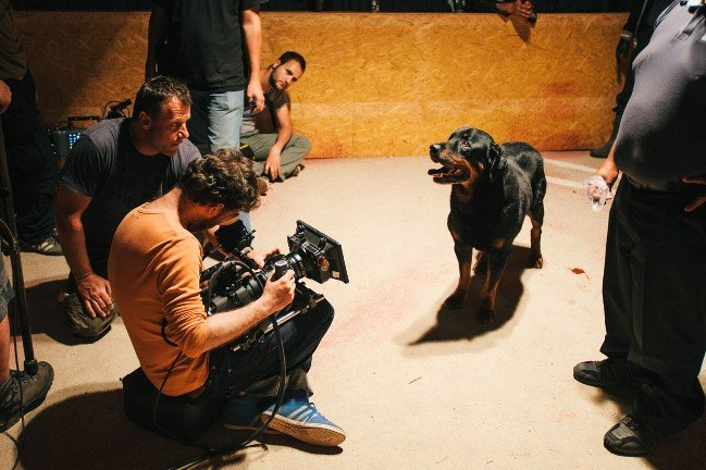 DP Marcell Rév and focus puller Zsolt Fehér shoot Rocky, who belongs to trainer Alvin Mears and plays a vicious attack dog. Photograph by Sándor Fegyverneki
