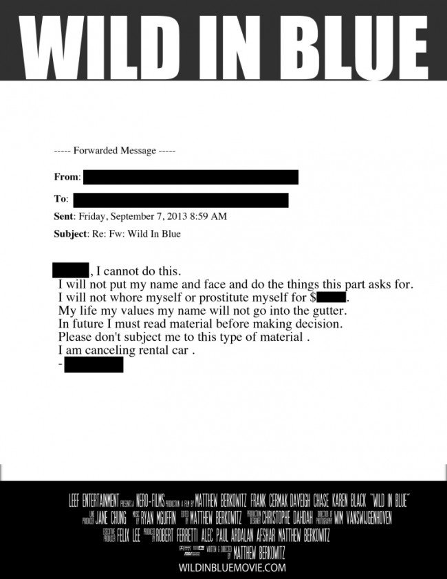 A poster idea for Wild in Blue, based on an email written to the producers by a potential cast member